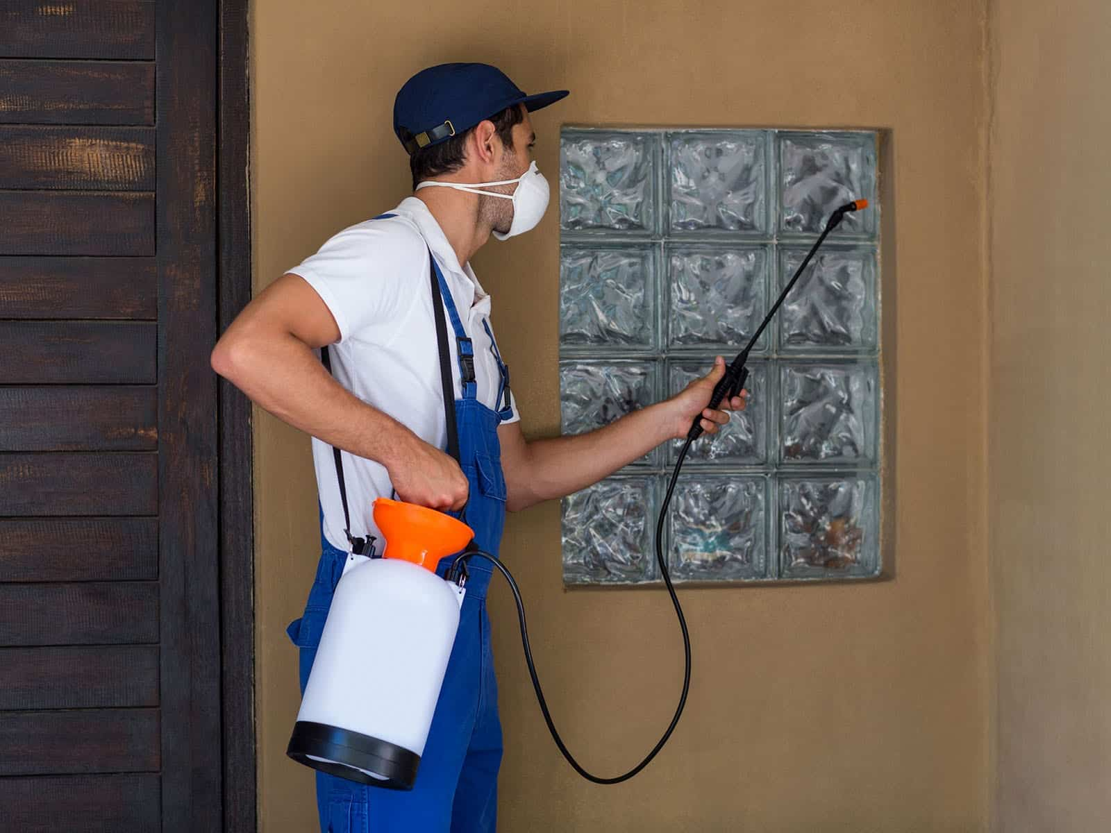 GreenPro Outdoor Pest Control – Spraying the House