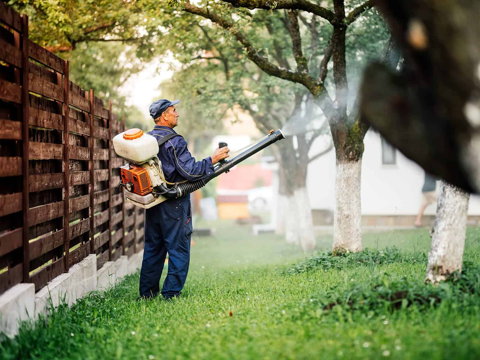 GreenPro Outdoor Pest Control – Spraying Lawn and Trees