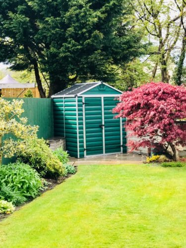 Corner section of small garden with shed and surrounding trees